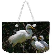 Eye Of The Egret Weekender Tote Bag