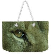 Eye Of The Lion Weekender Tote Bag