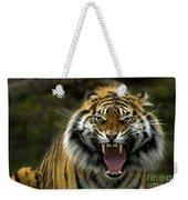 Eyes Of The Tiger Weekender Tote Bag