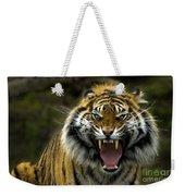 Eyes Of The Tiger Weekender Tote Bag by Mike  Dawson