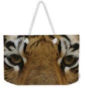 Eyes Of The Tiger Weekender Tote Bag by Sandy Keeton