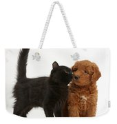 F1b Goldendoodle Pup With Kitten Weekender Tote Bag
