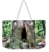 Fairy Blessings Weekender Tote Bag