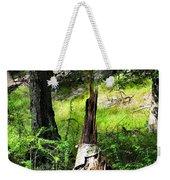 Fairy Dwelling Weekender Tote Bag
