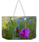 Fairy Lantern In Park Sierra-ca Weekender Tote Bag
