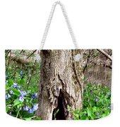 Fairy Place Weekender Tote Bag