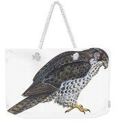 Falcon Weekender Tote Bag