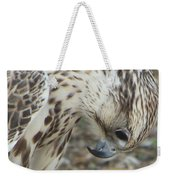 Bowing Falcon Weekender Tote Bag
