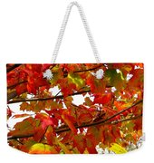 Fall 08-005 Weekender Tote Bag