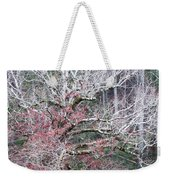 Fall At Cades Cove Weekender Tote Bag by Todd Blanchard