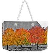 Fall At The Mann Weekender Tote Bag