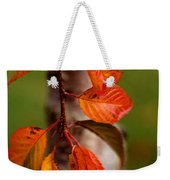 Fall Beauty Weekender Tote Bag