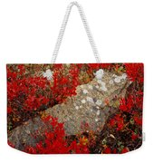 Fall Blueberries And Moss-h Weekender Tote Bag