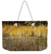 Fall Color At Banff Spring Basin Weekender Tote Bag