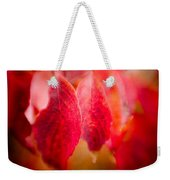 Fall Colors 0666 Weekender Tote Bag