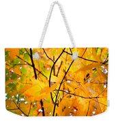 Fall Colors 2014-7 Weekender Tote Bag