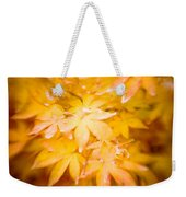 Fall Colors 6664 Weekender Tote Bag
