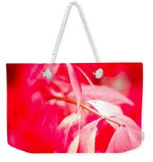 Fall Colors 6669 Weekender Tote Bag