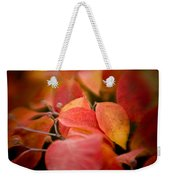 Fall Colors 6675 Weekender Tote Bag