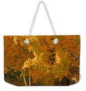 Fall Colors Weekender Tote Bag by Adam Romanowicz