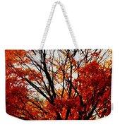 Fall Colors Cape May Nj Weekender Tote Bag