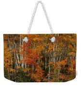 Fall Colors Greeting Card Weekender Tote Bag
