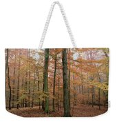 Fall Colors In Catoctin Mt. Park Weekender Tote Bag