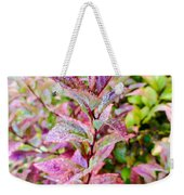 Fall Colors On A Foggy Day 2 Weekender Tote Bag