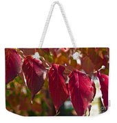 Fall Dogwood Leaves Weekender Tote Bag
