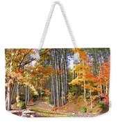 Fall Driveway And Coco The Dog Weekender Tote Bag