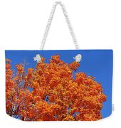 Fall Foliage Colors 19 Weekender Tote Bag