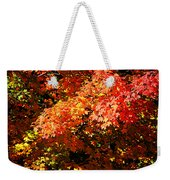 Fall Foliage Colors 21 Weekender Tote Bag