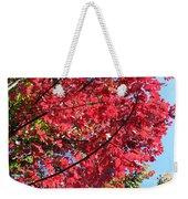 Fall In Illinois Weekender Tote Bag