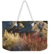 Fall In The Santa Rosas Weekender Tote Bag by Scott Campbell