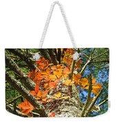 Fall Ivy On Pine Tree Weekender Tote Bag