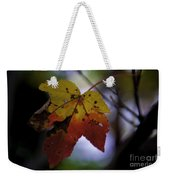 Red And Yellow Maple Leaf Weekender Tote Bag