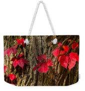 Fall Leaves Against Tree Trunk Weekender Tote Bag