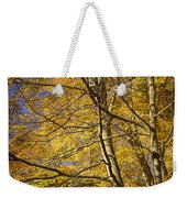 Fall Leaves And Trees In West Michigan No171 Weekender Tote Bag