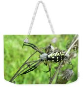 Fall Meadow Spider - Argiope Aurantia Weekender Tote Bag
