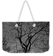 Fall Reflection Weekender Tote Bag