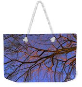 Fall Reflections By Diana Sainz Weekender Tote Bag