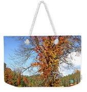 Fall Trees 5 Of Wnc Weekender Tote Bag