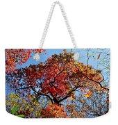 Fall Trees Of Wnc Weekender Tote Bag