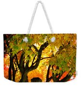 Fall Trees On A Country Road 3 Weekender Tote Bag