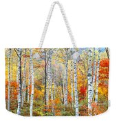 Fall Trees, Shinhodaka, Gifu, Japan Weekender Tote Bag