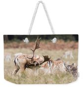 Fallow Deer - Amazing Antlers Weekender Tote Bag