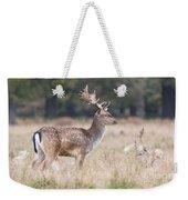 Fallow Deer Buck On Guard  Weekender Tote Bag
