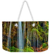 Falls And Moss Weekender Tote Bag