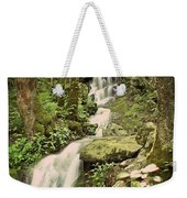 Falls In The Smokies Weekender Tote Bag