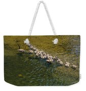 Family Of Geese On The Rogue River Weekender Tote Bag